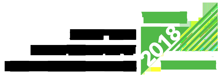 Vibes 2018 winner